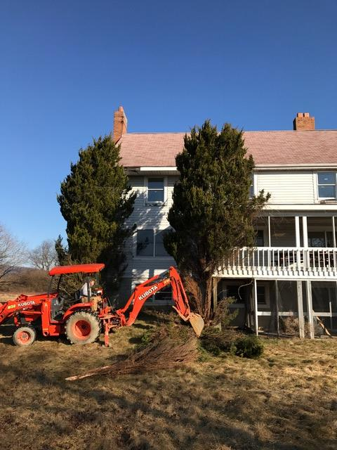 The warm weather last week gave volunteers a chance to work on the house, both inside and outside. Trees were removed, cabinets were painted, and work