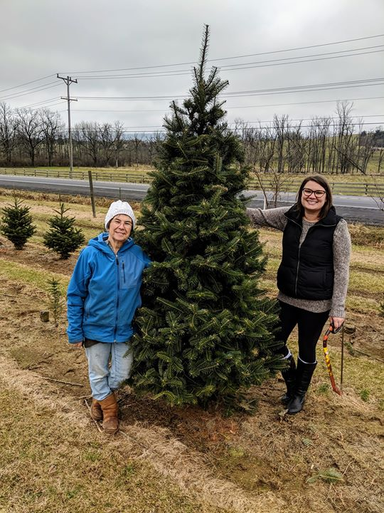 ACRES Christmas tree!!  Our annual tradition at Taits
