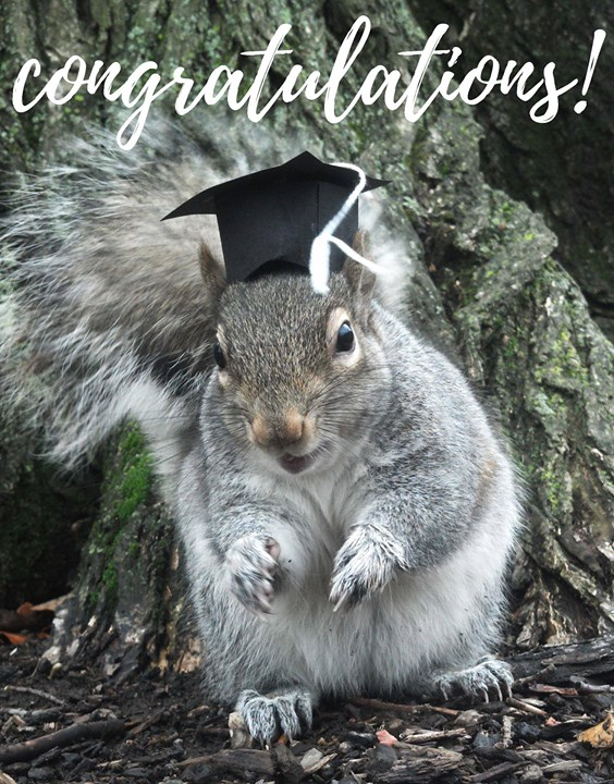 Congratulations to all past and present ACRES interns and staff who are graduating today!