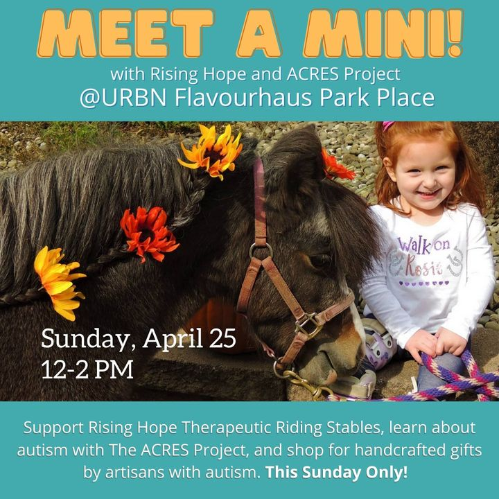 This Sunday Only! Join ACRES and Rising Hope Therapeutic Riding Center at URBN Flavourhaus from 12-2 PM to meet some friendly mini horses, learn about